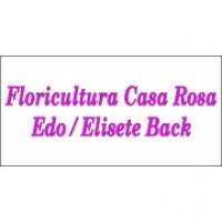 FLORICULTURA CASA ROSA