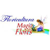 FLORICULTURA MAGIA DAS FLORES