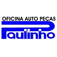 OFICINA AUTO PEÇAS PAULINHO
